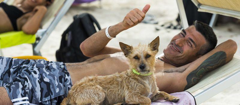 Vacanze con cani in Sardegna