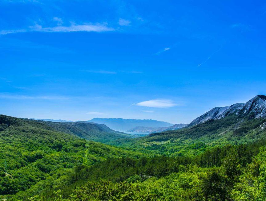 Litoraneo-montana